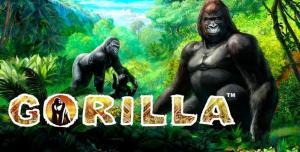 Как получить бесплатные раунды в аппарате Gorilla из казино Вулкан