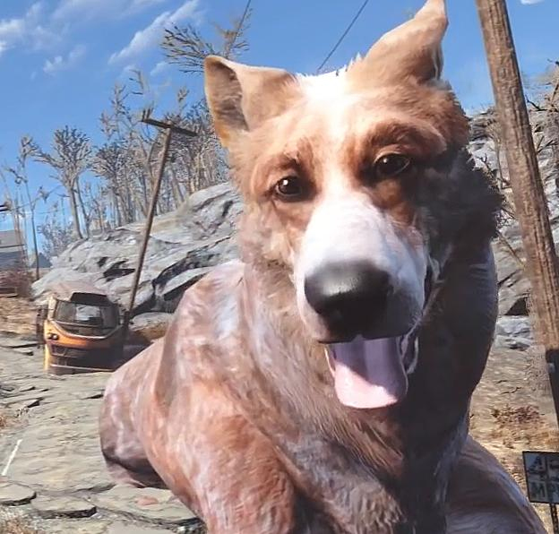 Собаки из GTA V, Fallout 4 и MGS 5 номинированы на звание собак года