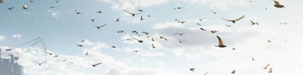 Птицы в Battlefield 4. Технология PecksFX AMD
